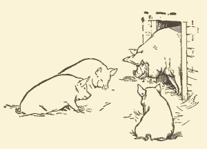 Three Little Pigs jacobs