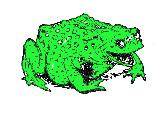 Frog-program green