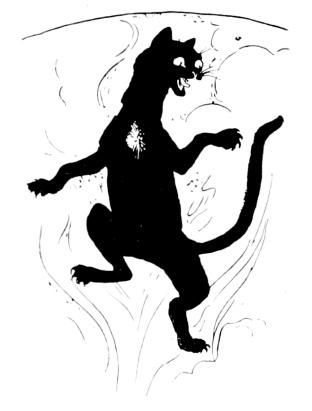 gabriel-rider-black-cat