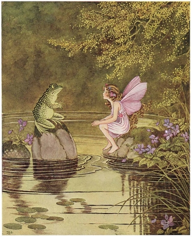 Seahare fairy and frog