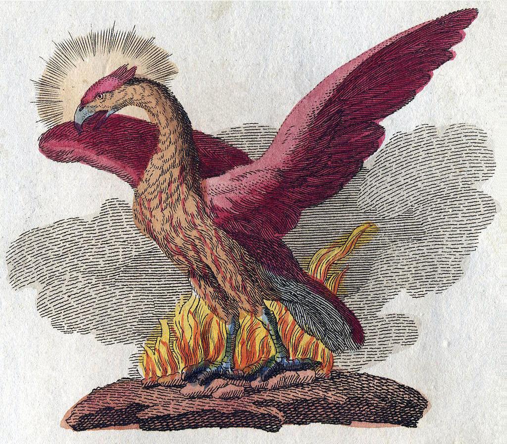undadv Phoenix-Fabelwesen